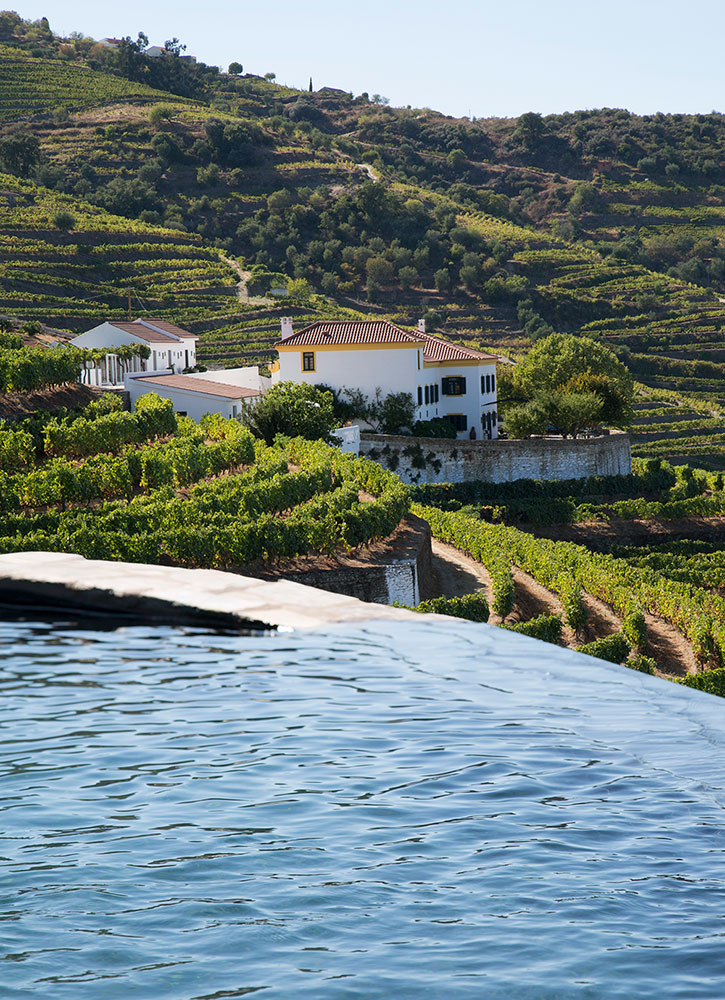 The pool with a view of the vineyards at Quinta da Côrte