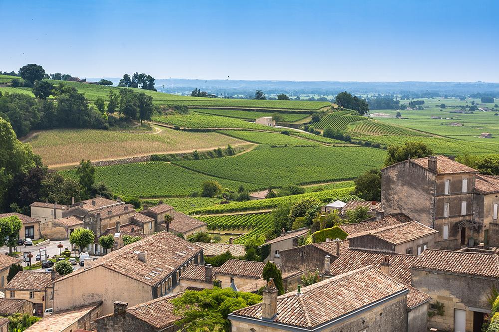 A vineyard in the village of Saint-Emilion, France
