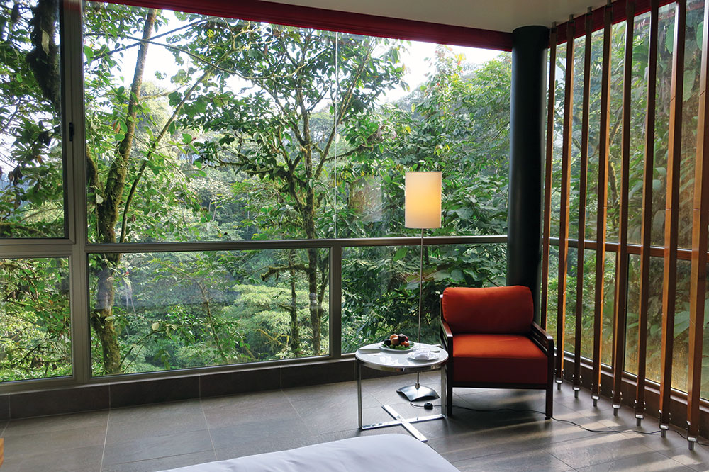 Wayra King Room at Mashpi Lodge in Calacali, Ecuador