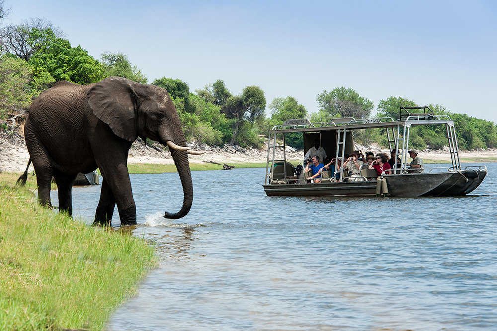 Excursion on the Chobe River from the <i>Zambezi Queen</i>