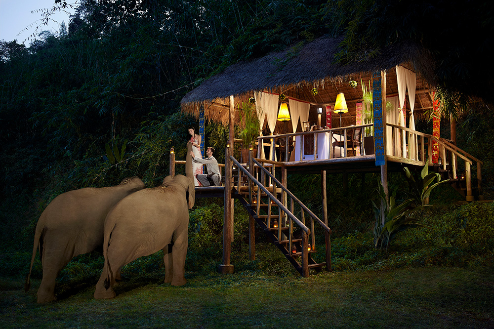 Anantara Golden Triangle Elephant Camp and Resort in Thailand