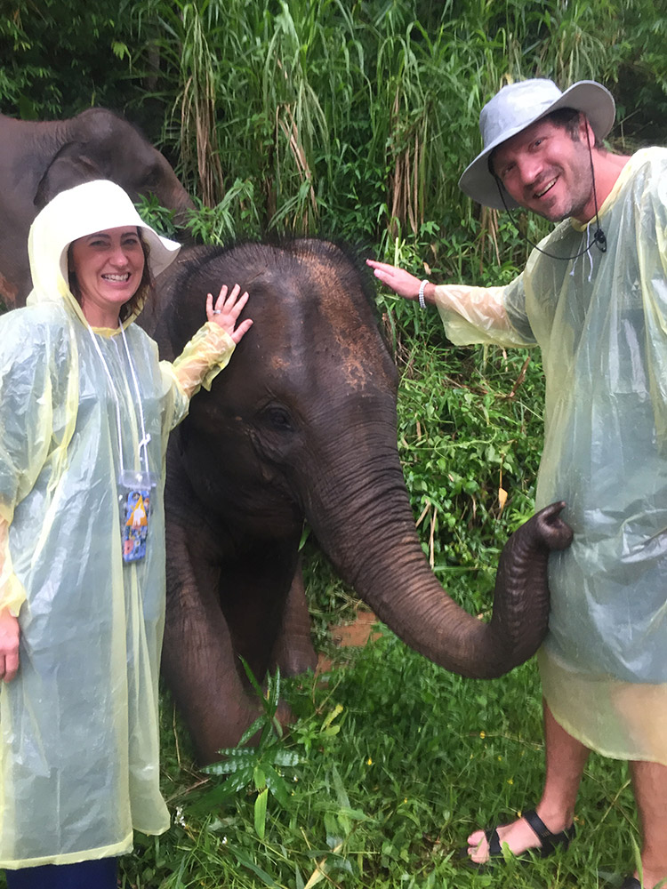 """Scratching the fuzzy head of a baby elephant at the end of the """"Walking With Giants"""" tour"""