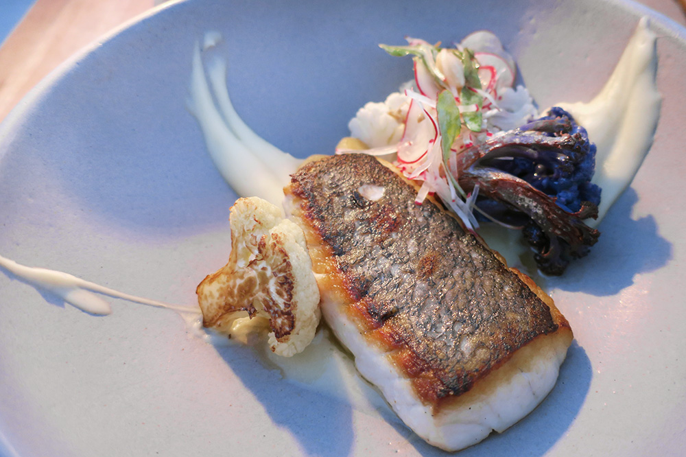 Totoaba with sunchoke purée from <em>COMAL</em> at Chileno Bay Resort in Los Cabos, Mexico - Photo by Andrew Harper