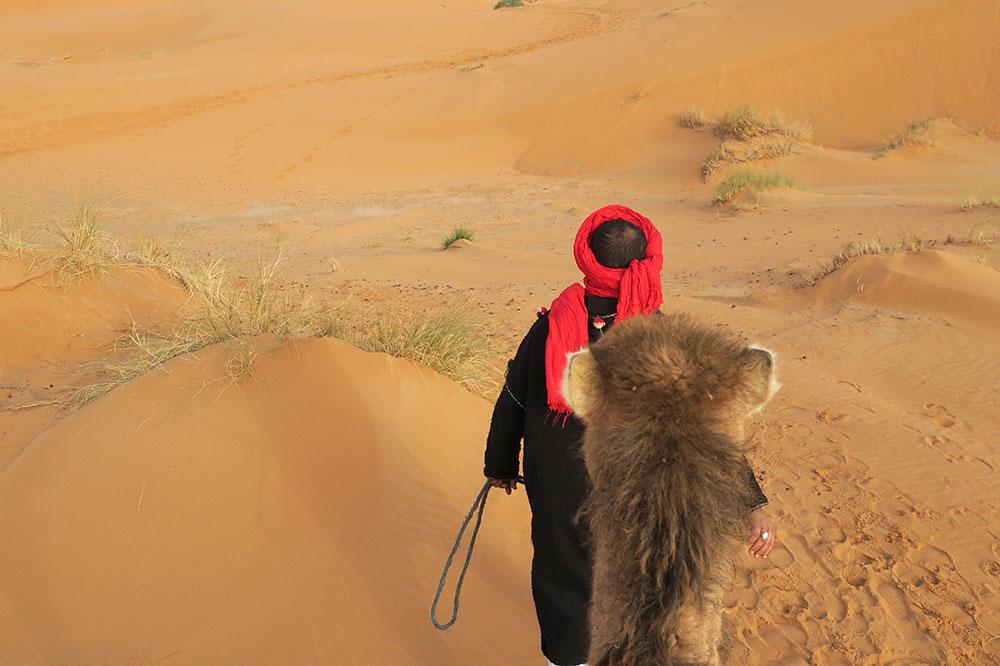 Our camel wrangler, Mohammed, guiding us through the Sahara during a ride near Merzouga Luxury Desert Camps in Merzouga, Morocco