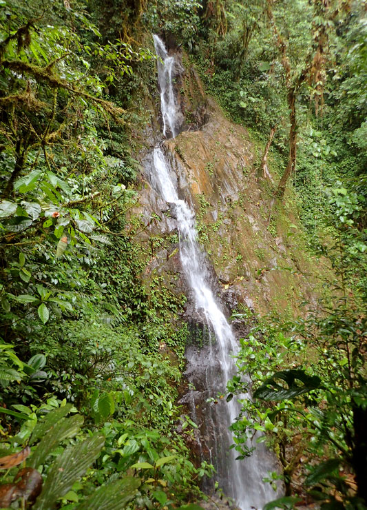 Copal waterfall near Mashpi Lodge - Photo by Andrew Harper