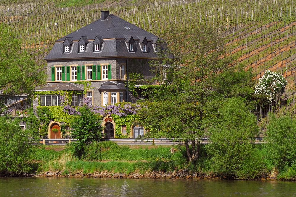 Dr. Loosen Estate House
