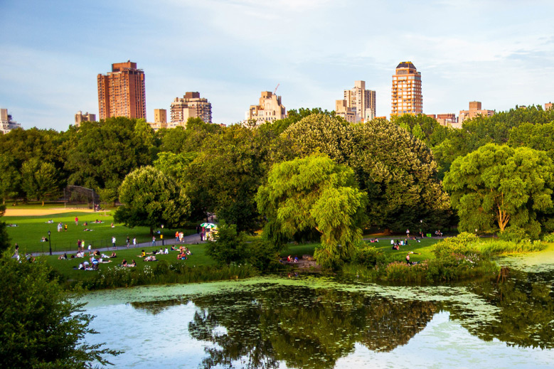 Escape the City: NYC Day Trips