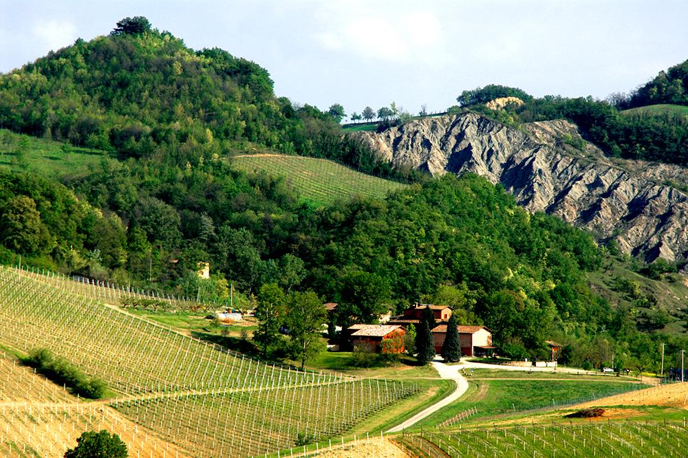 The rolling hills at Bio Agriturismo Corte d'Aibo in Monteveglio, Italy