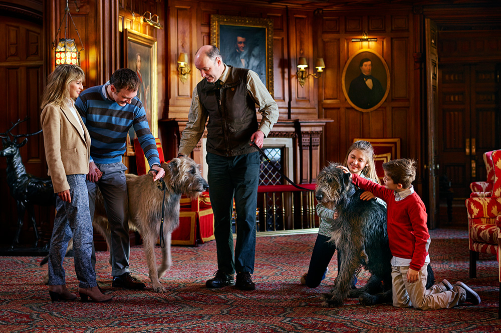 Cronan and Garvan, the resident Irish wolfhounds at Ashford Castle in Cong, County Mayo, Ireland, are available for guests to take for walks.