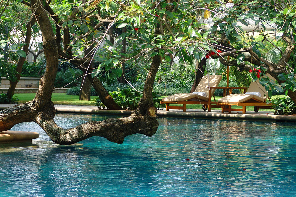 The pool at The Dharmawangsa Jakarta