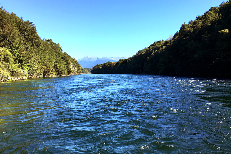 Waiau River near Fiordland Lodge