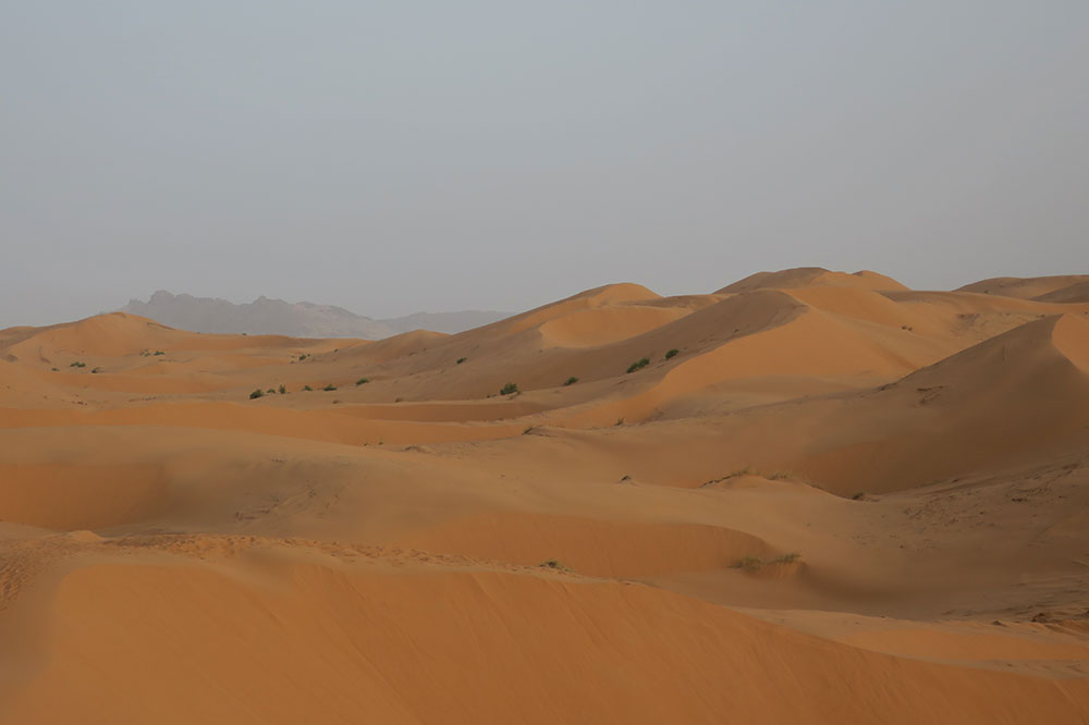 The Sahara in the early evening, near Merzouga Luxury Desert Camps in Merzouga, Morocco
