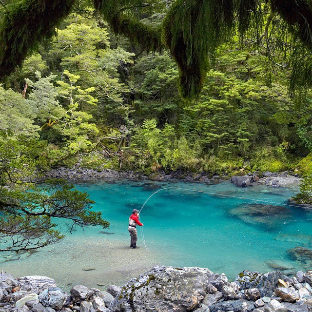 Where to travel new zealand for New zealand fly fishing