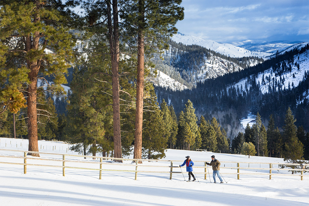 Cross-country skiers within a winter landscape in the Rockies