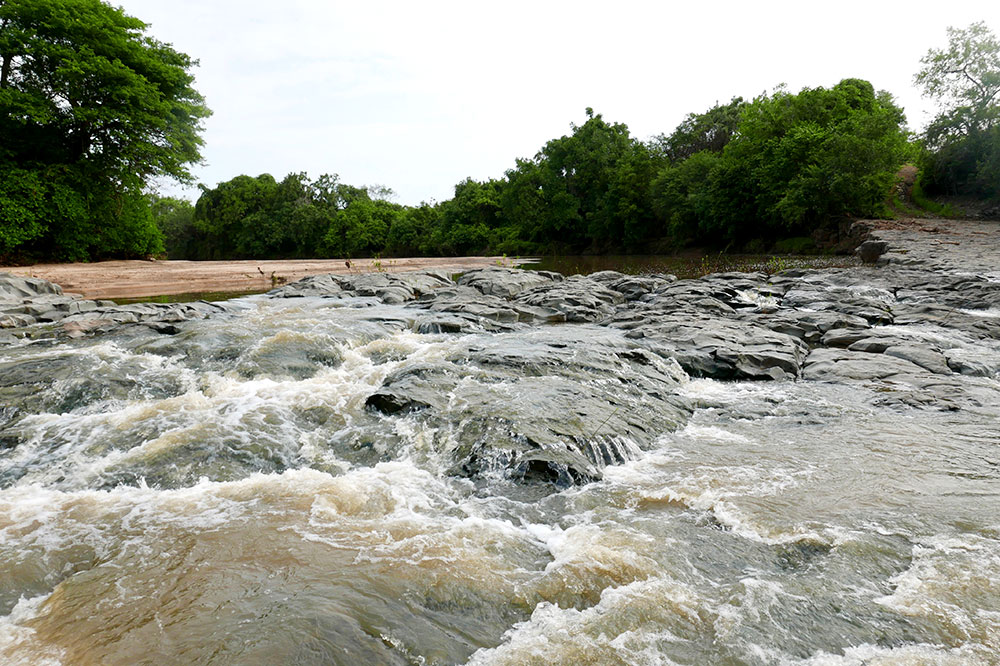 The Rufiji River flowing through the Selous Game Reserve
