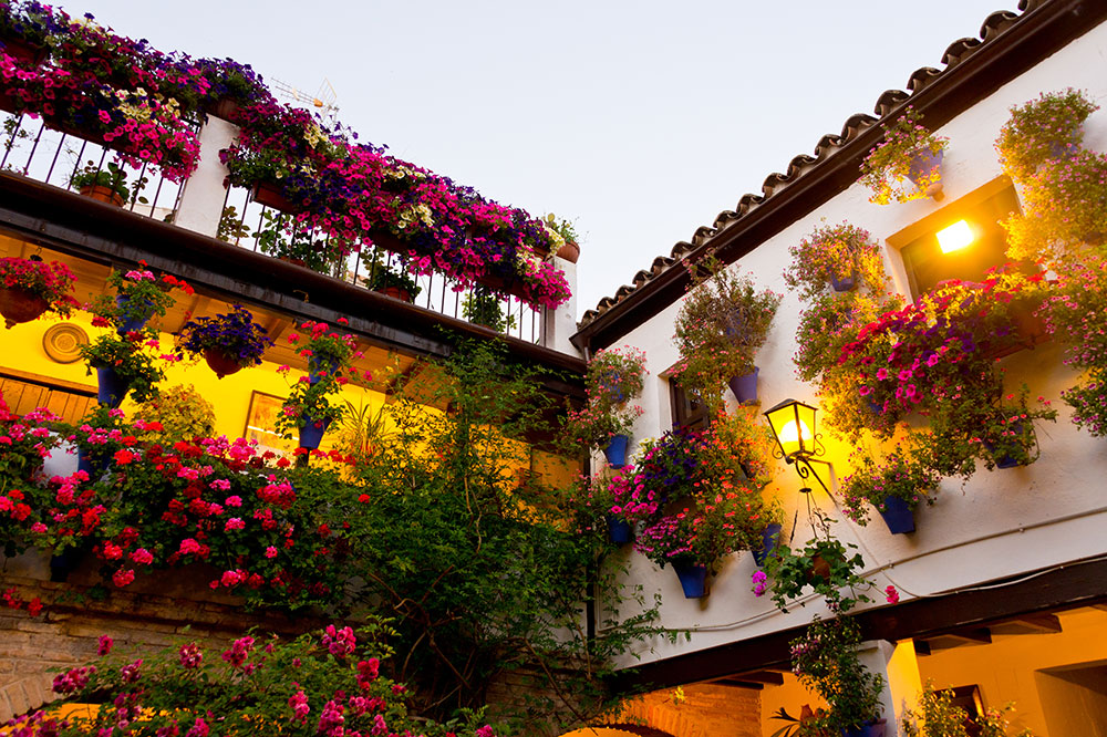 A traditional flower-decorated patio at the Courtyards Festival in Cordoba, Spain
