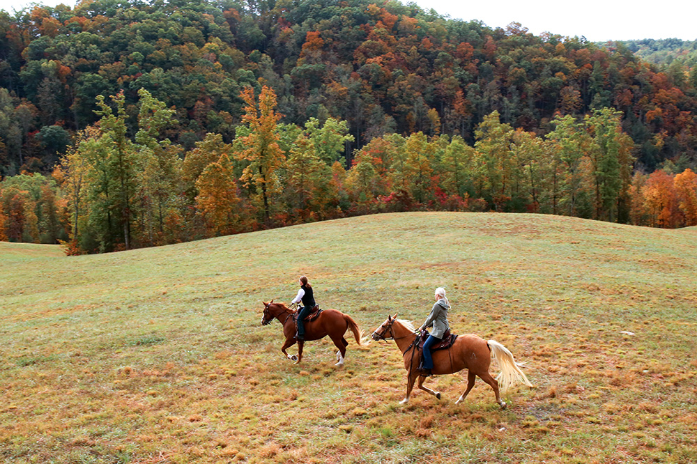 Horseback riding on the grounds of Blackberry Mountain in Walland, Tennessee