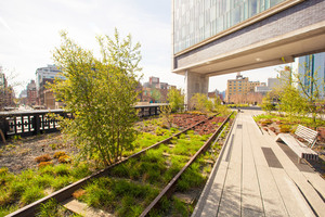 Sunny spring day on New York's High Line