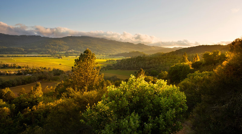 calistoga_ranch_view