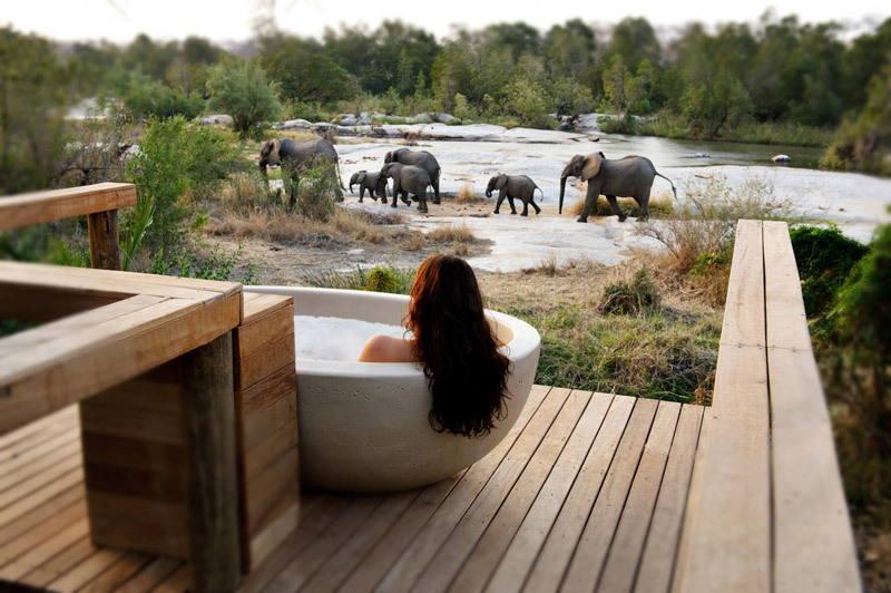 Londolozi Private Game Reserve.