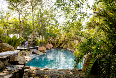 Singita Ebony Lodge pool