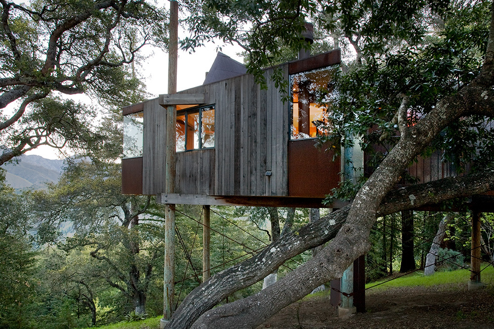 The exterior of the Tree House