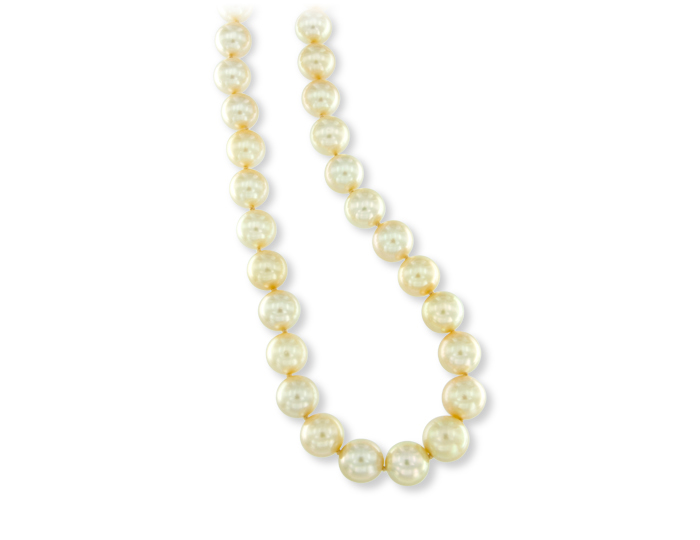 South Sea pearl necklace in 18k yellow gold.