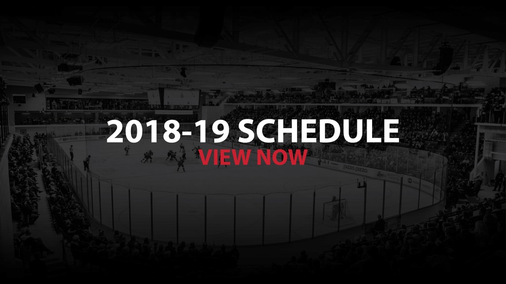 picture regarding Detroit Red Wings Printable Schedule named 2018-19 AHL Routine - Belleville Senators