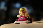 Wario driving a kart