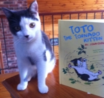 Toto and Book