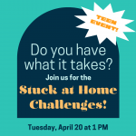 REMOTE VIA GOOGLE MEET: Stuck at Home Challenges