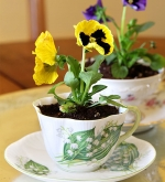 Virtual Teen Program - Mother's Day/ Special Someone Teacup Planters