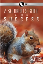 Library in Motion- NATURE: A Squirrel's Guide to Success