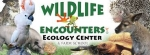 (virtual) Animal program presented by Wildlife Encounters via zoom (for all ages)
