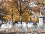 """Friends of the Library Cultural Event:  """"A Virtual Tour of Dover's Cemeteries"""""""