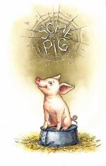 Some Pig Celebration!