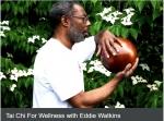 Tai Chi For Wellness with Eddie Watkins