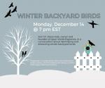 Winter Backyard Birds with Steve Hale
