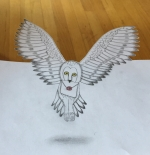 Anamorphic Hedwig - a Pop Up Art School Virtual Workshop