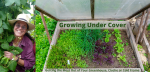 Growing Under Cover: Getting the Most Out of Your Greenhouse, Cloche or Cold Frame