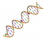 Using Third Party Tools to Maximize DNA Research
