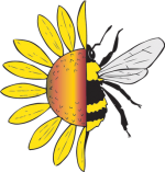 Native Bees: The Unstung Heroes
