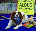 Barking Book Buddies!