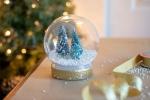 Monthly Adult Craft on Zoom 18+ - DIY Snow Globe