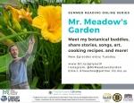 Mr. Meadow's Garden
