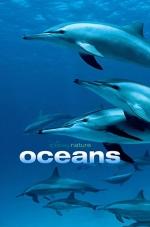 Ocean Film Series: Ocean (2009) (Rated G)