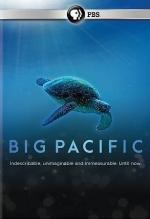 Ocean Film Series: Big Pacific (2017) (Rated PG)