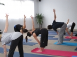 Lunchtime Lecture: Intro To Hatha Yoga