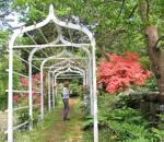 Pleasure Grounds: Public Gardens Close to Home