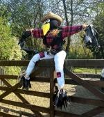 Scarecrow Contest!